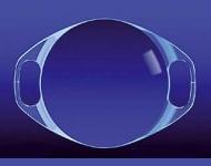 Artisan Myopia