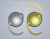 CT LUCIA 601P/Y